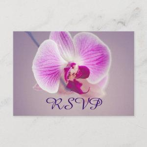 Radiant Purple Orchid Wedding RSVP starting at 2.11